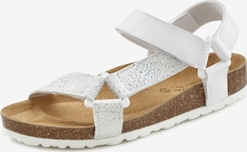 LASCANA Hiking Sandals in White
