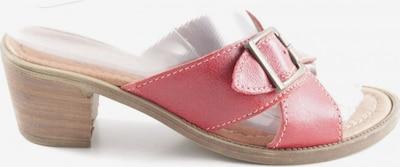 ANDREA CONTI Riemchen-Sandaletten in 36 in rot, Produktansicht