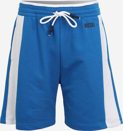 DIESEL Pants 'PAN' in Royal blue / White, Item view