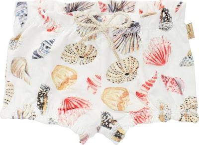Noppies Pantalon 'Merzen' en mélange de couleurs / blanc, Vue avec produit
