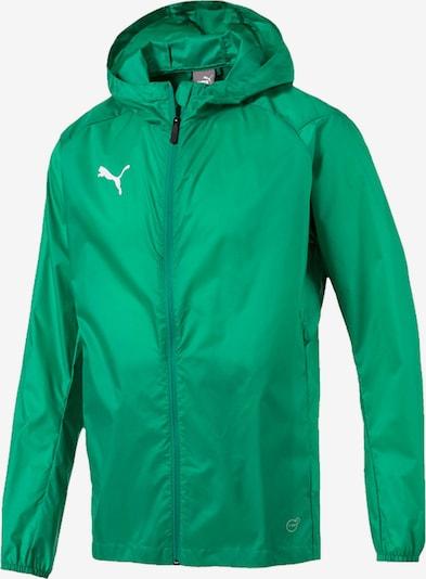 PUMA Jacke in grün / weiß, Produktansicht