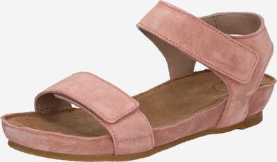 Ca Shott Sandaler med rem i lyserød, Produktvisning