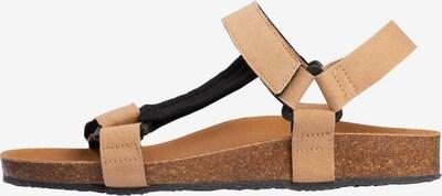 SCHOLL Sandale in beige / schwarz, Produktansicht