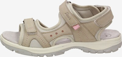 SIOUX Sandale 'Oneglia-700' in beige / rosa, Produktansicht