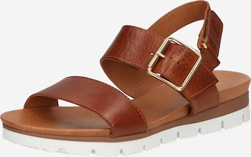 Bianco Sandale 'Debra' in Braun