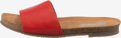 Greenova Pantolette in rot, Produktansicht