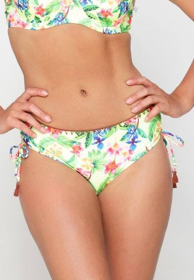 LingaDore Bikinihose in mischfarben, Modelansicht