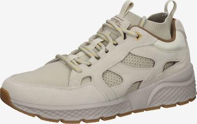 CAMEL ACTIVE Sneaker in beige / braun / gelb, Produktansicht
