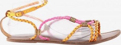 ILSE JACOBSEN Riemchen-Sandalen in 41 in hellorange / pink, Produktansicht