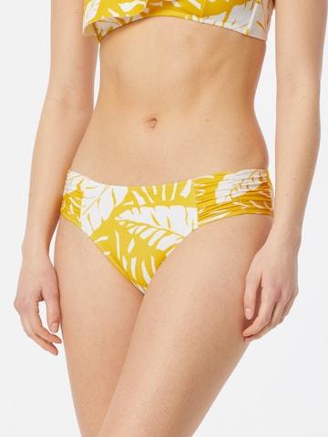 watercult Bikini Bottoms in White
