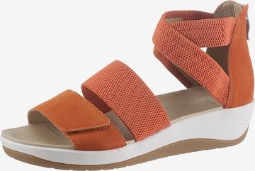 ARA Sandale in Braun