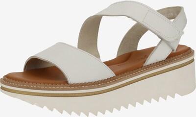 Paul Green Sandale in braun / weiß, Produktansicht