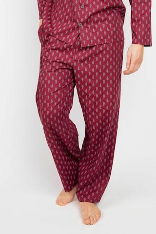 Cyberjammies Pajama Pants 'Frankie Paisley' in Red