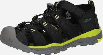 KEEN Sandale 'NEWPORT NEO H2' in Schwarz