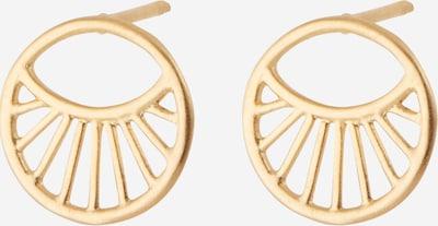 Pernille Corydon Jewellery Oorbellen 'Daylight' in de kleur Goud, Productweergave