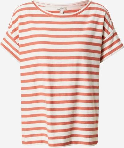 ESPRIT T-Shirt in pitaya / weiß, Produktansicht