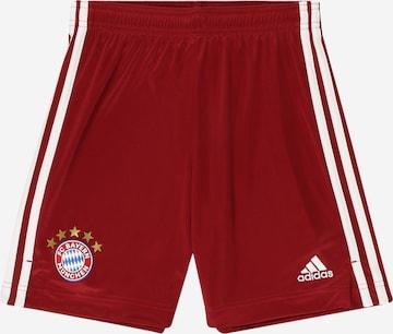 ADIDAS PERFORMANCE Spordipüksid 'FC Bayern München', värv punane