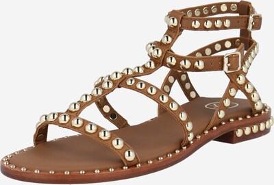 ASH Sandale u smeđa, Pregled proizvoda