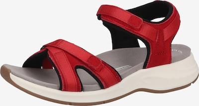CLARKS Sandalen in rot, Produktansicht
