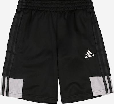ADIDAS PERFORMANCE Sporthose 'B A.R.' in hellgrau / schwarz / weiß: Frontalansicht
