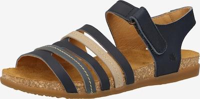 EL NATURALISTA Sandaal in de kleur Blauw, Productweergave