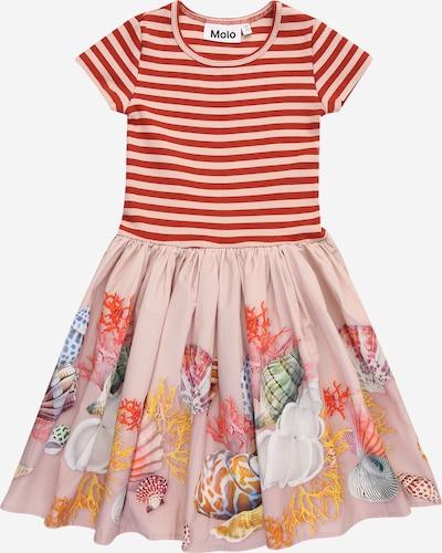 Molo Robe 'Cissa' en mélange de couleurs / rose, Vue avec produit