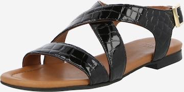 Billi Bi Sandale in Schwarz