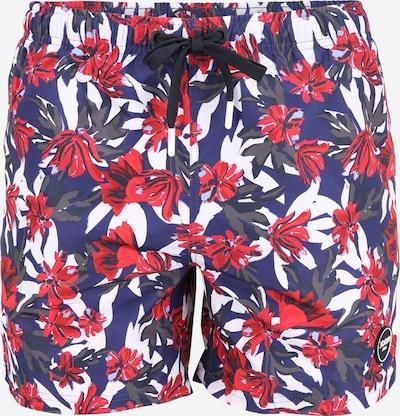 JOOP! Jeans Kratke kopalne hlače 'Laguna_Beach' | modra / bazaltno siva / grenada / bela barva, Prikaz izdelka