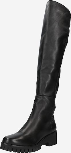 Overknee Donna Carolina di colore nero, Visualizzazione prodotti