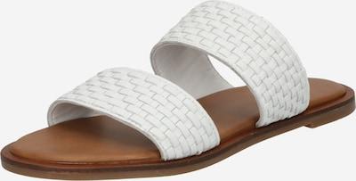 ALDO Pantolette 'JERECIAA' in weiß, Produktansicht