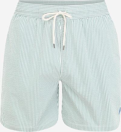 POLO RALPH LAUREN Plavecké šortky 'TRAVELER' - pastelově zelená / bílá, Produkt