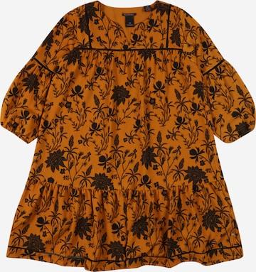 SCOTCH & SODA Dress in Brown