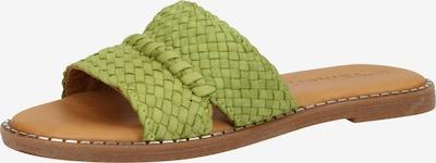 TAMARIS Pantoletten in pastellgrün, Produktansicht