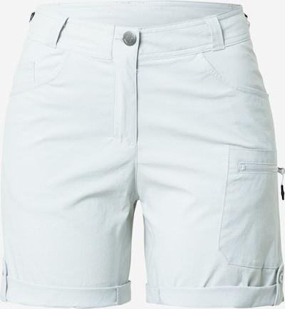 DARE2B Pantalon outdoor 'Melodic II' en gris clair, Vue avec produit