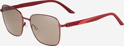 PUMA Sonnenbrille in grau / burgunder, Produktansicht