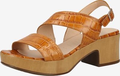 Wonders Sandalen met riem in de kleur Honing, Productweergave