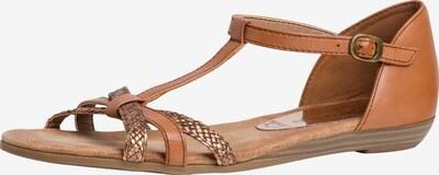 TAMARIS Sandale in dunkelbeige / braun, Produktansicht