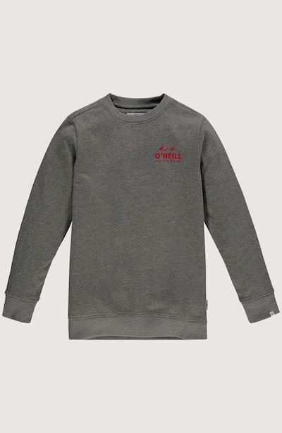 O'NEILL Sweatshirt 'Cali' in grau / rot, Produktansicht