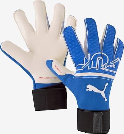 PUMA Handschuh in blau, Produktansicht