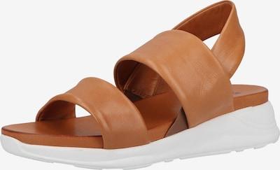 ILC Sandalen in braun, Produktansicht