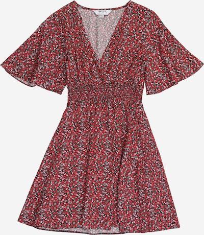 Dorothy Perkins (Petite) Kleid in grün / rot / weiß, Produktansicht
