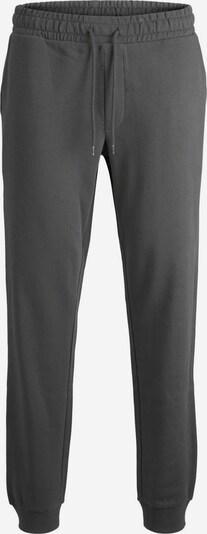 JACK & JONES Pantalon de sport en gris argenté, Vue avec produit