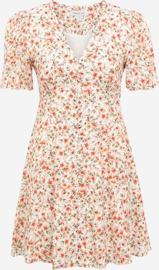 Forever New Petite Ljetna haljina u zelena / crvena / bijela, Pregled proizvoda