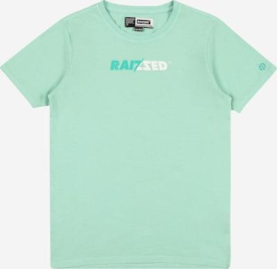 Tricou 'HUMBERTO' Raizzed pe verde mentă / verde jad, Vizualizare produs