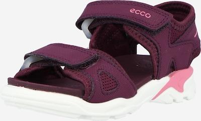 Atviri batai 'Biom Raft' iš ECCO, spalva – uogų spalva, Prekių apžvalga