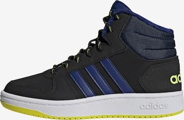ADIDAS PERFORMANCE Sneaker 'HOOPS' in Schwarz