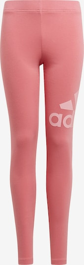 ADIDAS PERFORMANCE Leggings in pink / rosa, Produktansicht