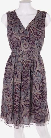Massimo Dutti Dress in L in Purple