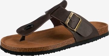 Freyling T-Bar Sandals in Brown
