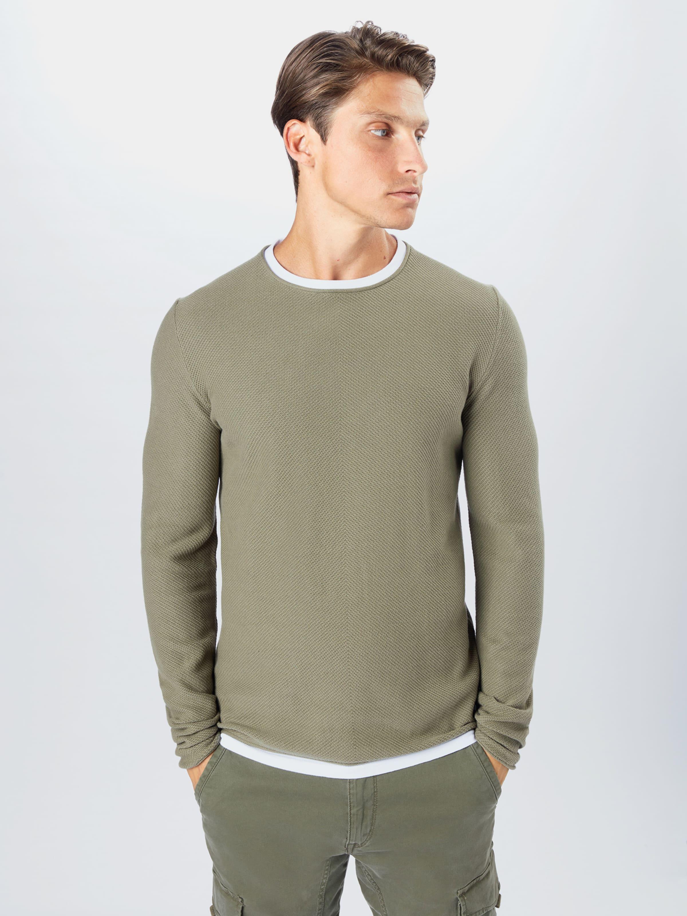 TOM TAILOR DENIM Pullover in oliv / offwhite Unifarben TTD3850003000006